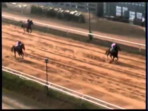 ม้าแข่งสนามขอนแก่น 2 มีค.57