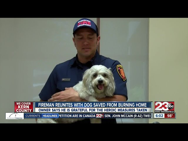 Dog reunites with hero firefighter who saved him in a Bakersfield house fire
