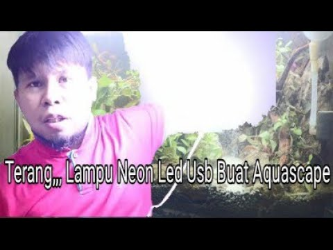 review-dan-rakit-lampu-neon-led-usb-untuk-aquascape