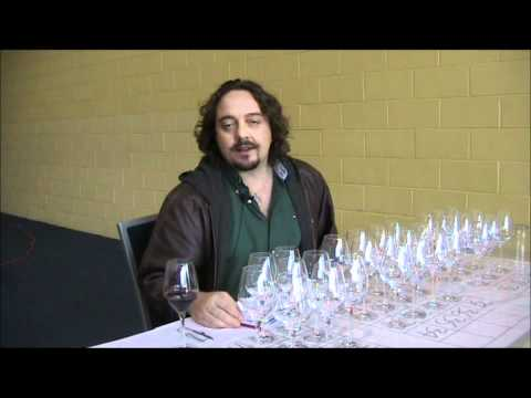 Five Nations Wine Challenge 2011 - Chile with Eduardo Brethauer