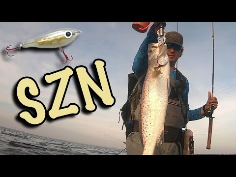Corky SZN Is Here!!! | Fishing Paul Brown Custom Corky Fatboy For BIG Trout!