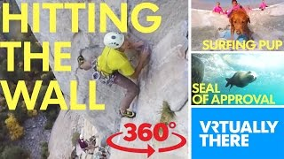 VR climb up Leaning Tower in Yosemite, catch waves with surfing therapy dog thumbnail