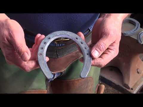 Choosing Shoes For A Barrel Horse