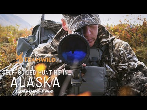 Self-guided Moose & Caribou Hunting In Alaska: Episode 5 - Moose Season Opens
