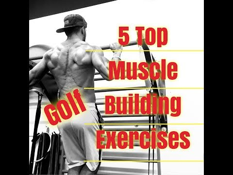 Top 5 Muscle Gaining Exercises For Golfers
