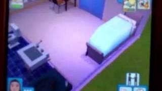 Test Les Sims 3 sur Ds