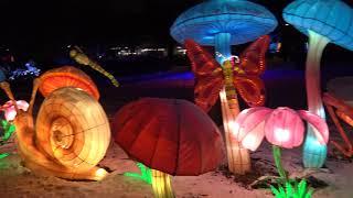 Смотреть видео Москва 2020. Фестиваль Китайских волшебных фонариков. онлайн