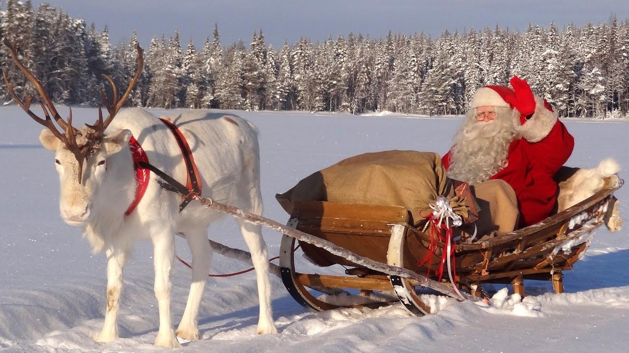 Rentier Mit Weihnachtsmann