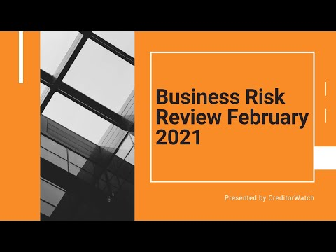 Business Risk Review February 2021