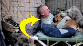 Soldier Hasn't Seen Best Friend In 2 Yrs. Watch What Happens When They're Finally Reunited
