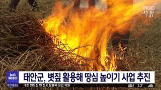 태안군, 고품질 쌀 생산 위한 '땅심 높이기&#…