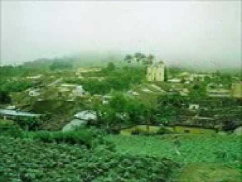 ARATUBA CE.aviara