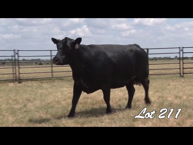 Pollard Farms Lot 211