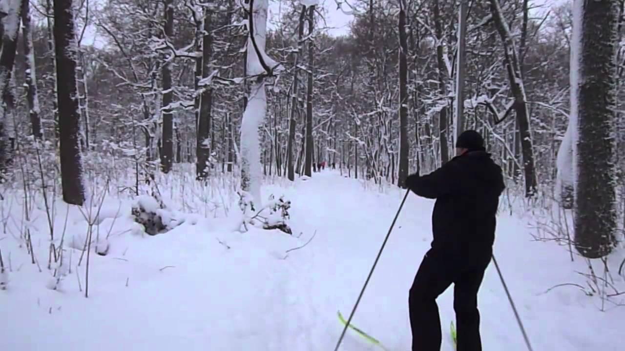 Schi alpin cu varice