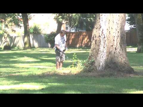 Out And About With Prospector Gary Episode 3
