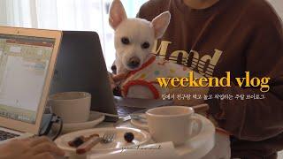 [Vlog] 집콕 브이로그 | 친구와 함께 집에서 고소…