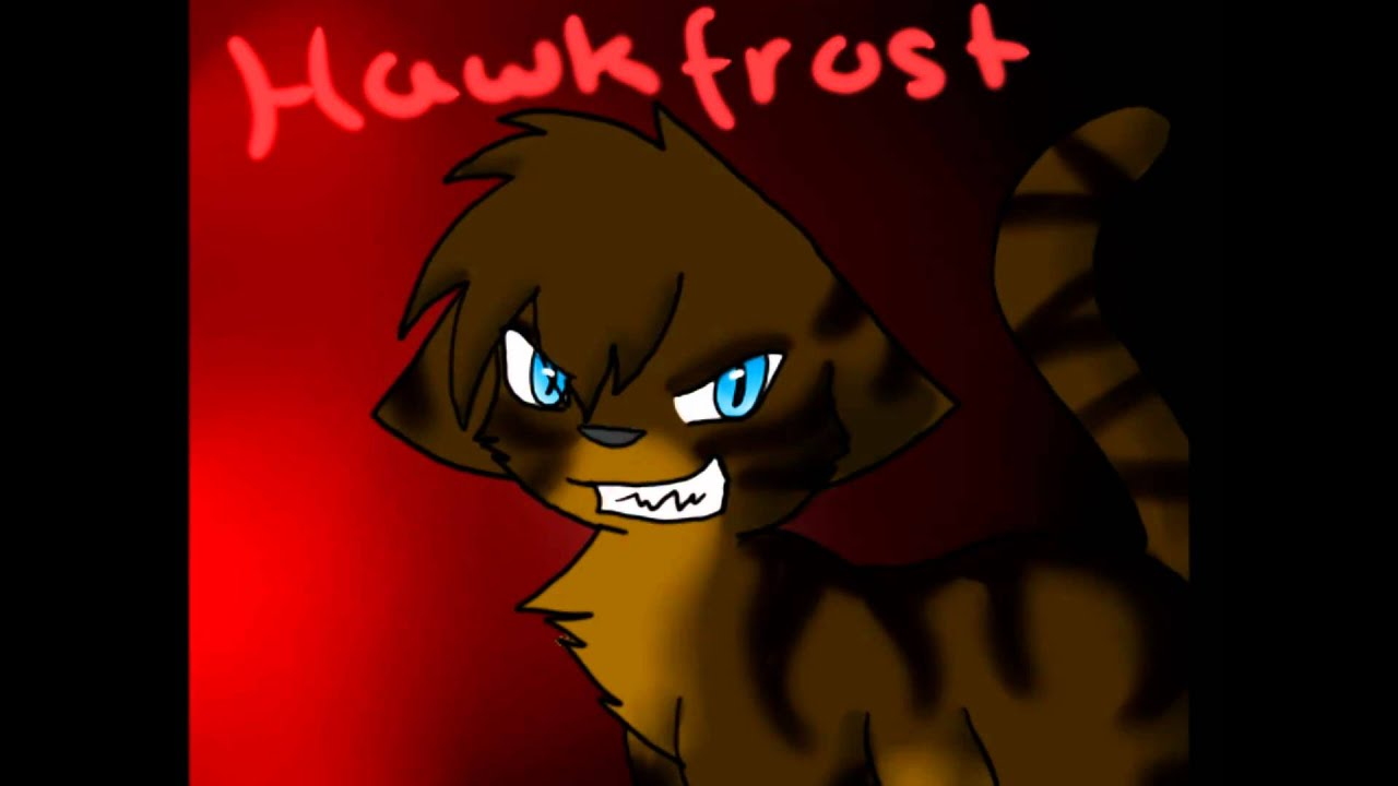 Where Are You Now Warrior Cats