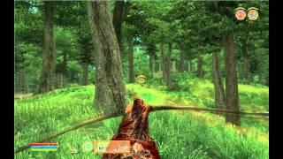 The Elder Scrolls Oblivion gameplay