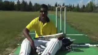 The CRICKET song by Wilbur Sargunaraj