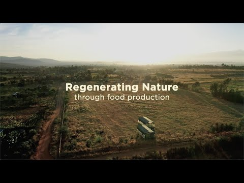 Regenerative Farming in Kenya | Circular food systems in East Africa 1/5