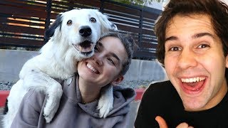 SURPRISING MY ASSISTANT WITH PUPPY!!