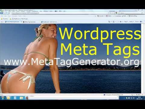 wordpress how to add meta tags