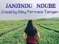 Janjindu Ndube cover by Mey Permata Tarigan
