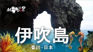 迷路のような楽しい江戸時代の道を散策♪日本 香川県 伊吹島