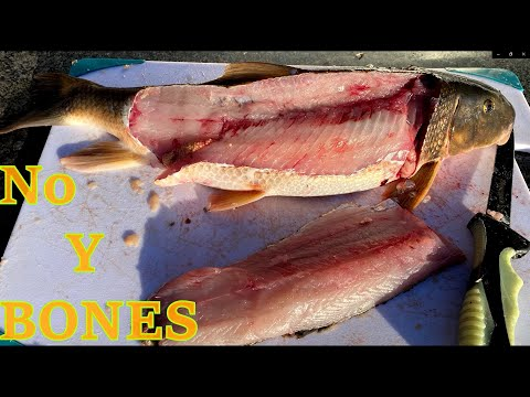 How To CLEAN/Fillet Sucker Fish  (NO Y BONES)