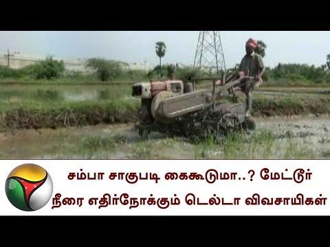 சம்பா சாகுபடி கைகூடுமா..? மேட்டூர் நீரை எதிர்நோக்கும் டெல்டா விவசாயிகள் | Delta Farmers | Cauvery