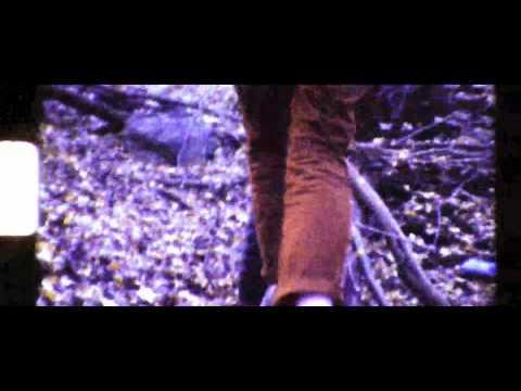 Male Bonding - Endless Now (Album Trailer 2 Video)