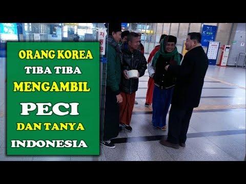 REAKSI ORANG KOREA MELIHAT PECI MUSLIM TKI INDONESIA