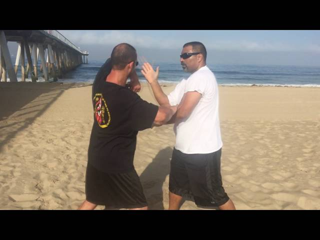 Wing Chun Sifu Arsenije Elbow drills