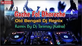 Gache Fol Dhoreche   Remix By Dj Tanmay Kalna