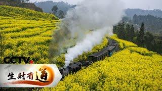 《生财有道》夏日经济系列——四川犍为:小火车跑出旅游生财路 20200721 | CCTV财经 - YouTube
