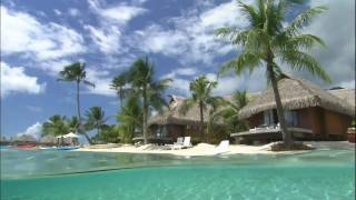 Enya - Wild Child & Caribbean Blue HD