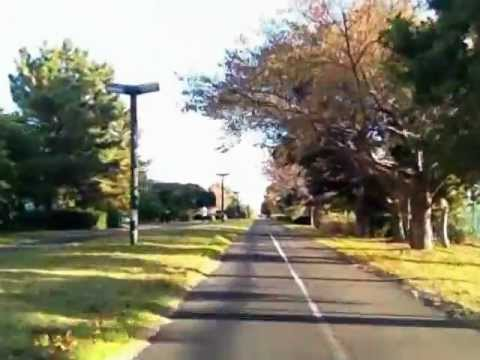 自転車ルート、葛西臨海公園 ...