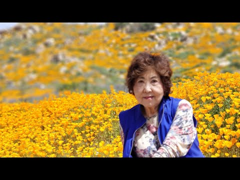 BDS GUAG: Taking Mom To See Poppies Super Bloom In Lake Elsinore FULL VIDEO