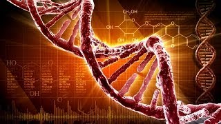 Three Dangerous Lies of Evolution