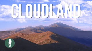 Cloudland, Great Alpine Road, Victorian Alps, Mt Hotham