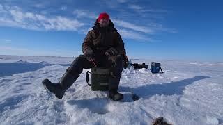 Озеро Юртовое Рыбалка на окуня в Северном Казахстане