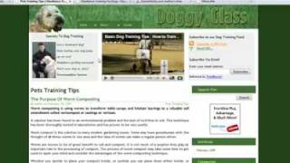 Dog Training Website For Sale