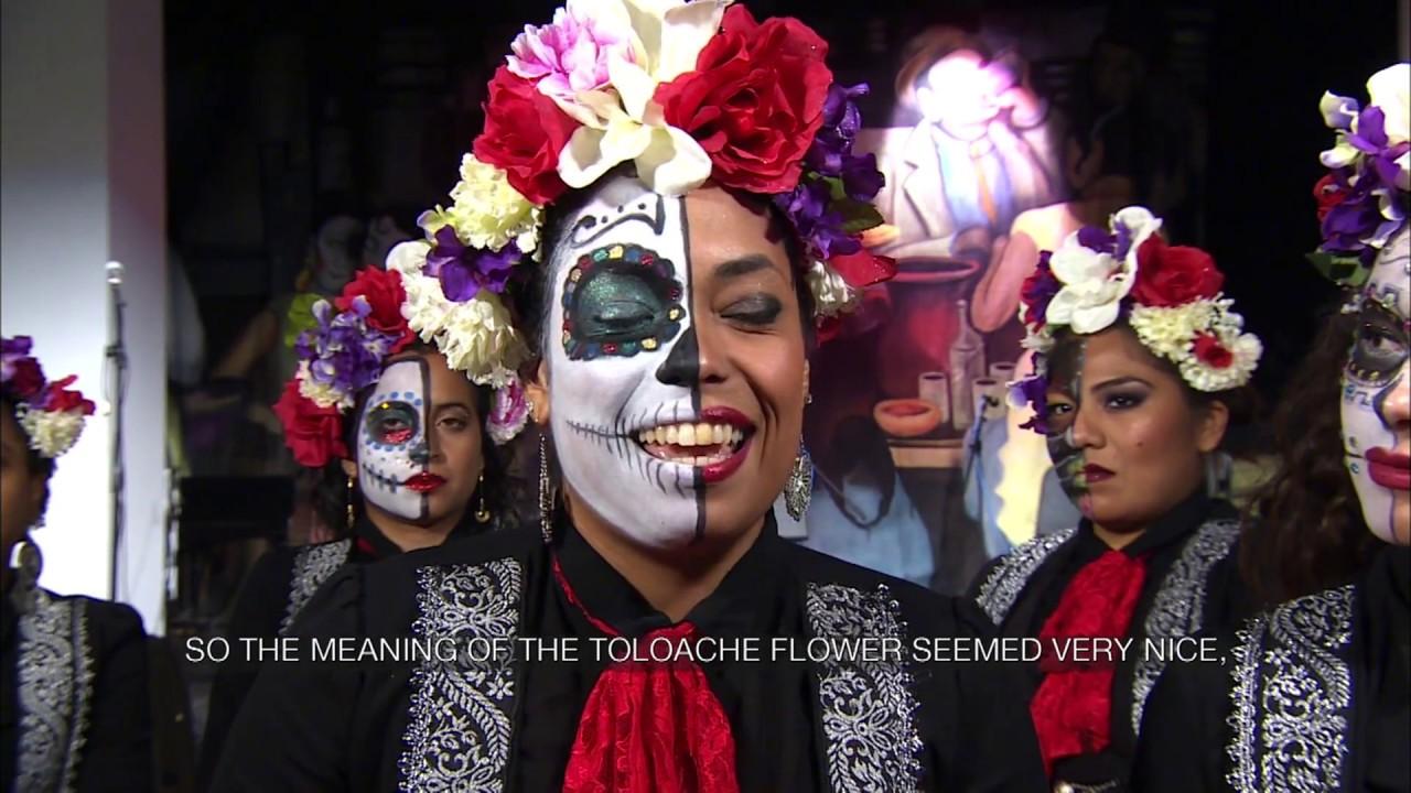 Female Mariachi band Mariachi Flor de Toloache