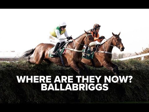 Where are they now? Ballabriggs