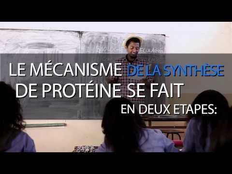 Clash Bacc :  biologie moléculaire...La révision by Amen Communication...