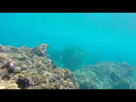 Snorkel en Maro (HD)