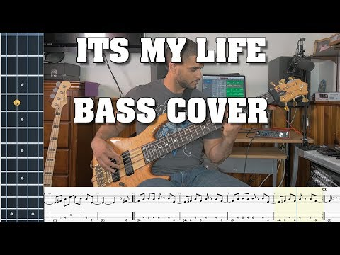 Its My Life - No Doubt - Bass Cover - With Tabs