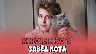 КОРОЧЕ ГОВОРЯ, ЗАВЁЛ КОТА-Топовый Пинск