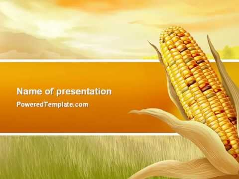 free corn thanksgiving powerpoint templatepoweredtemplate, Modern powerpoint