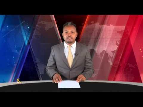 ESAT Oduu Afaan Oromoo Roobii Nov 14 2018
